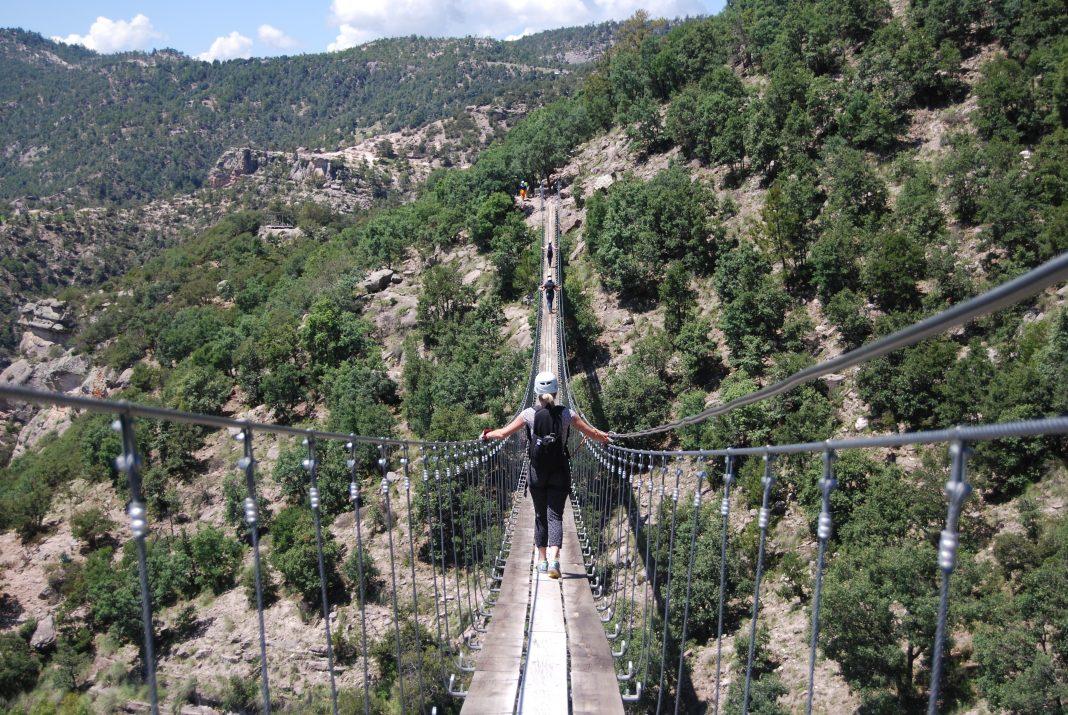 Hanging Bridge Copper Canyon Adventure Park