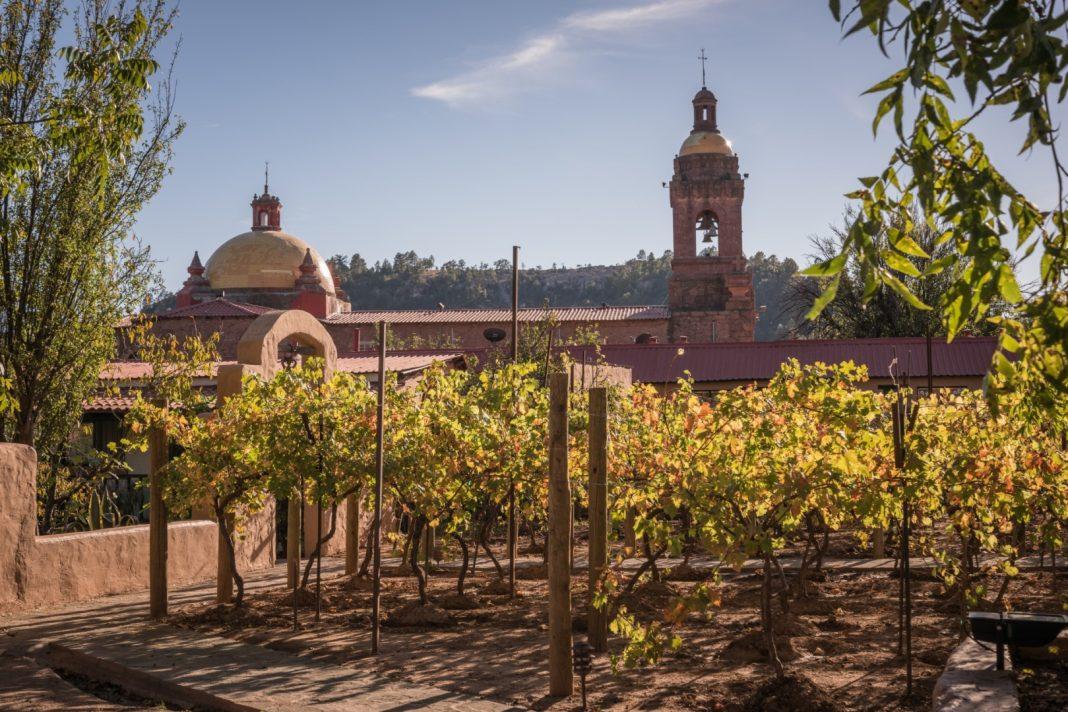Vineyard Hotel Cerocahui